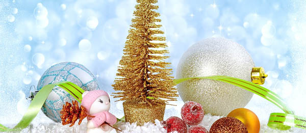 Festa di Natale Il Nido Biella